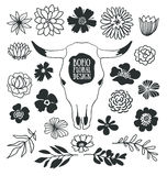 Boho black decorative plants and flowers collection with cow skull. Hand drawn vector design elements isolated on the white background Royalty Free Stock Image