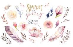 Boho-Blumensatz Bunte Blumensammlung mit Blättern und Blumen, zeichnendes Aquarell Frühling oder Sommerblumenstraußdesign lizenzfreie abbildung