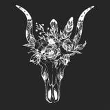 Boho chic image Fashion illustration Wild skull with flowers Boho style Royalty Free Stock Photo