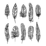 Boho feather hand drawn effect vector style illustration Stock Photo