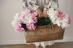 Boho girl holding pink and white peonies in rustic basket. Stylish hipster woman in bohemian floral dress gathering peony flowers. Happy mothers day royalty free stock photos