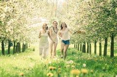 3 Boho-Meisjes Stock Fotografie