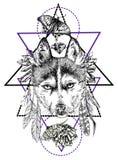 Boho style animal Stock Images
