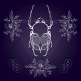 Boho tattoo. Blackwork beetle, May bug in hipster triangle frame Stock Image