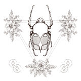 Boho tattoo. Blackwork beetle, May bug in hipster triangle frame Royalty Free Stock Images