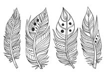 Boho tribal feather collection Stock Photos