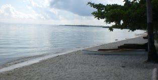 Bohol sjösida arkivfoton