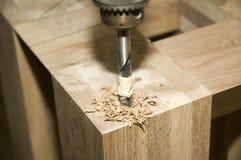 Bohrendes Holz Stockbild