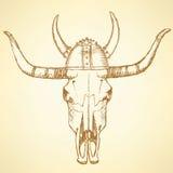 Boi do longhorn de texas do esboço ilustração royalty free