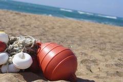 Boia na praia Fotos de Stock Royalty Free