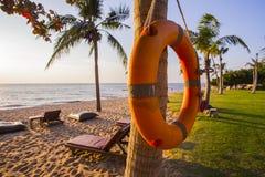 Boia salva-vidas alaranjado, pendurando no tronco da palma na praia fotografia de stock
