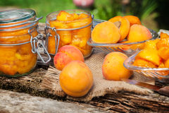 Boil apricot Stock Images