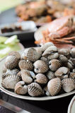 Boil cockles Stock Images