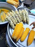 Boil corn. Colors tray sweet market food stock images