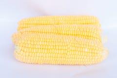 Boil corn. On white background stock photo