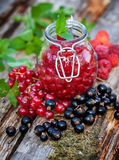 Boil down Fresh Berries Royalty Free Stock Photography