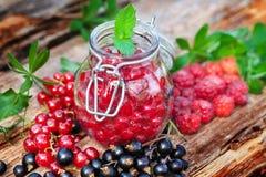 Boil down Fresh Berries Stock Images