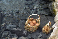 Boil eggs in the bamboo basket at hot spring. Boild eggs in bamboo basket drop it in to hot springs royalty free stock photo