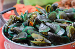 Boil Mussel Royalty Free Stock Image