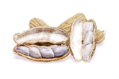 Boil peanuts. A boil peanuts on white background stock photography