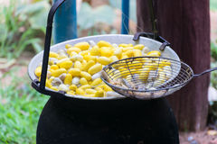 Boil silkworm.boil silk.boil worm. Boiled silkworm yellow color in the pot royalty free stock photography