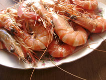 Boil tiger prawns. Close up Stock Photo