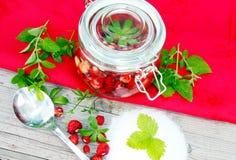 Boil wild strawberries Stock Photos
