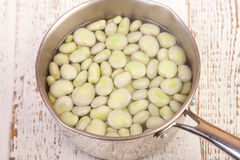 Boild broad beans Royalty Free Stock Images