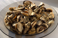 Boiled appetizing sea mussels Royalty Free Stock Images
