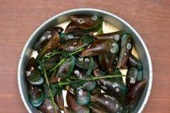 Boiled Asian green mussel, Perna viridis Stock Images