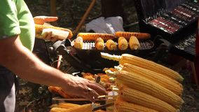 Boiled and baked corn cob stock footage