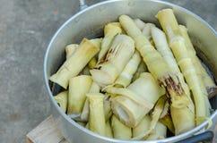 Boiled bamboo shoots Royalty Free Stock Photo