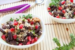 Boiled beans with walnut sauce and pomegranate Royalty Free Stock Photos