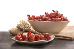 Boiled big crawfish on the wooden surface Stock Photography