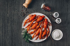 Boiled big red fresh crawfish in white plate with green herbs Royalty Free Stock Image