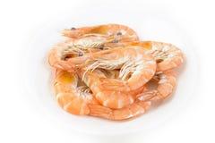 Boiled black tiger prawn Royalty Free Stock Photo