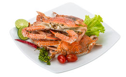 Boiled blue crab Royalty Free Stock Photos