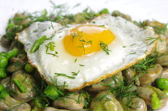Boiled broad bean with fried egg. And dill Stock Image