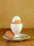 Boiled  Brown Egg in Eggcup Royalty Free Stock Photography