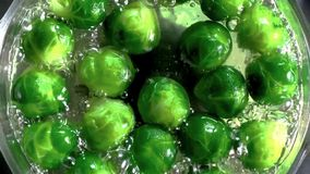 Boiled brussels sprouts with water on metal pan royalty free stock photography