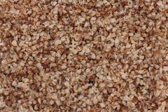 Boiled buckwheat Royalty Free Stock Photography