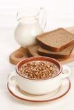 Boiled buckwheat with milk Stock Image