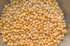 Boiled chick peas in a bowl royalty free stock photo