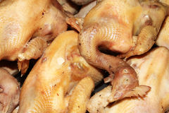 Boiled chicken Royalty Free Stock Images