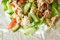 Boiled chicken breast with fresh vegetables and sour cream Stock Photos