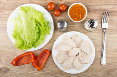 Boiled chicken meat in plate, leaf lettuce, sweet pepper, sauce Royalty Free Stock Photography
