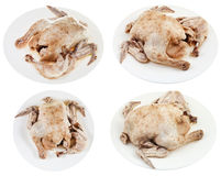 Boiled chicken on plate Royalty Free Stock Images