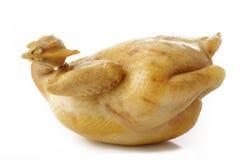 Boiled chicken Stock Photos