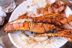 Boiled clayfish served on a plate Stock Photo
