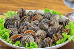 Boiled cockles and sea food Royalty Free Stock Photos